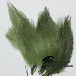 peří z kachny - barvené  3