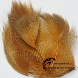 peří z kachny - barvené  17