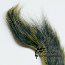 ocas  veverky - žlutý