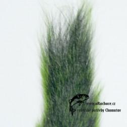 ocas  veverky - zelený