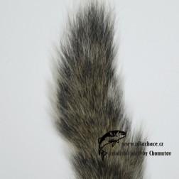 ocas  veverky - přírodní