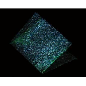 Web Flash Foil -  Peacock