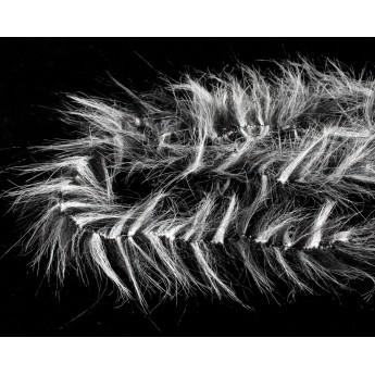 Furrybou Medium-  Black Melange Fur
